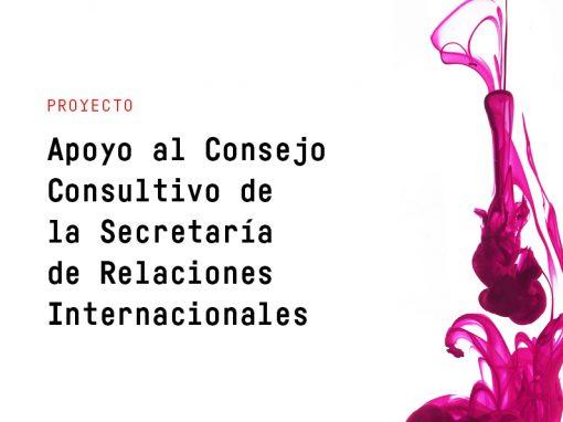 Capacitación en Relaciones Internacionales a Través de la Creación del Consejo Consultivo y la Escuela